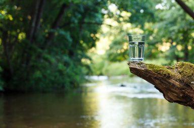 Woda w uprawie - znaczenie i typowe problemy
