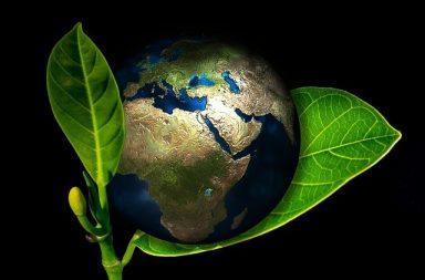 ekologiczne-ogrzewanie-domu